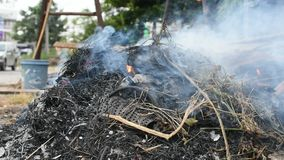 Brennend trocknen Sie Blätter stock footage
