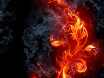 Brennende Blume Lizenzfreies Stockfoto