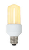Brennende energiesparende Lampe Stockfotografie