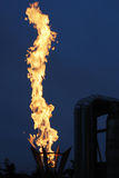Brennende Fackel Lizenzfreie Stockfotos