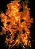 Brennende Goldmünzen Stockfotografie