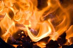 Brennende Kohle stockbild