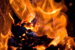 Brennende Kohle Stockbilder