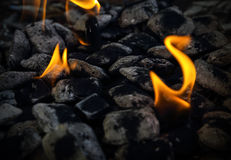 Brennende Kohlen Stockfotos