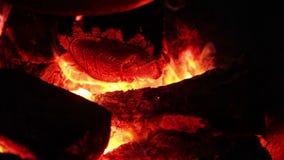 Brennende Kohlen des Kessels stock video footage