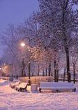 Brennende Laterne nachts im Park Lizenzfreies Stockfoto