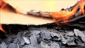 Brennende Pappe, Abschluss oben von Flammen und Asche stock video