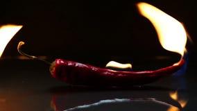Brennende Paprikapfeffer auf Glasoberfläche stock video footage