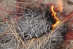 Brennende Räucherstäbchen Lizenzfreies Stockfoto