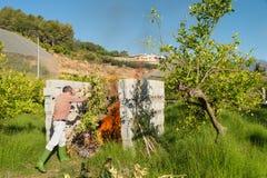 Brennender Beschneidungsabfall Stockfoto