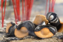 Brennender chinesischer gold-förmiger Weihrauch Stockbilder