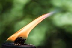 Brennender Fackeldocht mit Flamme lizenzfreies stockfoto