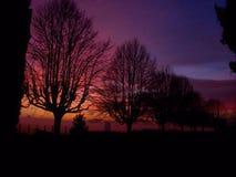 Brennender Himmel Stockfotografie