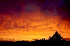 Brennender Himmel Stockfoto