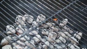 Brennender Kohlenstoff im Grillgrill stock video