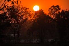 Brennender orange Sonnenuntergang des schönen Himmels Stockfoto