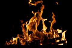 Brennendes Brennholz Stockbild