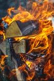 Brennendes Feuer im Grill mit Klotz Nahaufnahme Konzept des Waldbrands, Ökologie lizenzfreie stockfotos