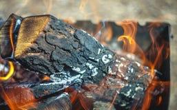 Brennendes Feuer im Grill mit Klotz Nahaufnahme Konzept des Waldbrands, Ökologie stockbilder
