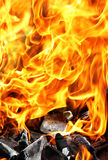 Brennendes Feuer und Holzkohle lizenzfreie stockfotografie