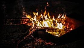 Brennendes Feuerholz und -glut Stockbild