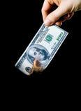 Brennendes Geld stockfotos