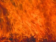 Brennendes Gras der Flamme Stockbild