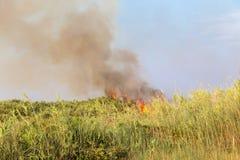 Brennendes Gras und dunkle Wolke lizenzfreies stockfoto