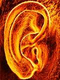 Brennendes heißes menschliches Ohr Stockbild
