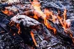 Brennendes Holz des Feuers Stockfotografie