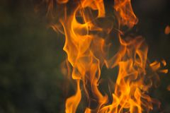 Brennendes Holz und Flammen stockfotografie