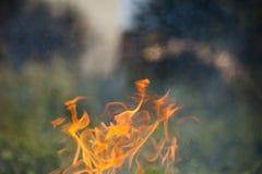 Brennendes Holz und Flammen lizenzfreie stockbilder