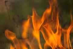 Brennendes Holz und Flammen lizenzfreie stockfotografie