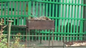 Brennendes Holz und Kohle im Messingarbeiter stock video