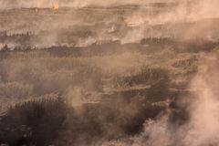 Brennendes trockenes Gras auf Feld Stockfotografie