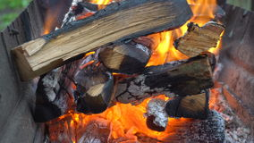 Brennholz brennt im Grill stock video footage