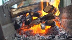 Brennholz brennt im Grill stock footage