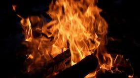 Brennholz Burning stock video