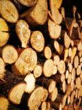 Brennholz in einer Scheune stockbild
