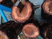 Brennholz für Picknick Lizenzfreies Stockfoto