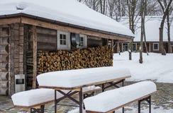 Brennholz für Winter Stockfotografie