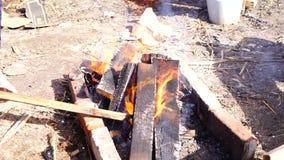 Brennholz, Feuer, das draußen im Feuer brennt stock video footage