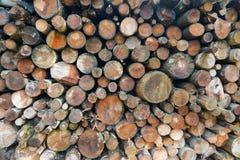 Brennholz gestapelt Stockfotos