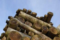 Brennholz gestapelt Lizenzfreies Stockfoto