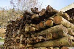 Brennholz gestapelt Stockfotografie