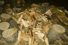 Brennholz und Hanf schließen im Wald oben stockfotografie