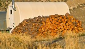 Brennholz-Versorgung Stockfotografie