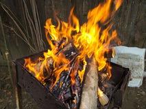 Brennholzdetail Lizenzfreie Stockfotos