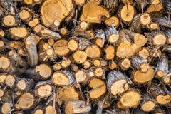 Brennholzhintergrundbeschaffenheit stockfotografie
