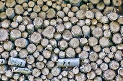 Brennholzklotz Lizenzfreies Stockbild